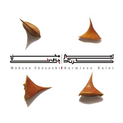 دانلود آهنگ جدید محسن چاوشی امیر بی گزند
