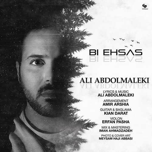 دانلود آهنگ جدید علی عبدالمالکی بی احساس